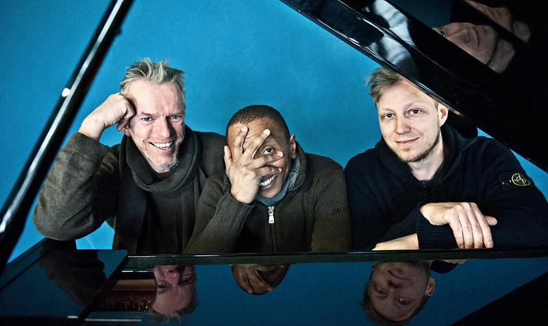 Tingvall Trio schaut durch die Klappe eines Flügel Pianos